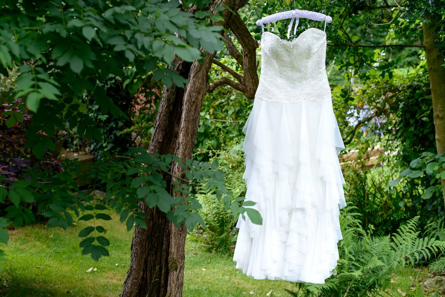 wedding-dress-in-tree