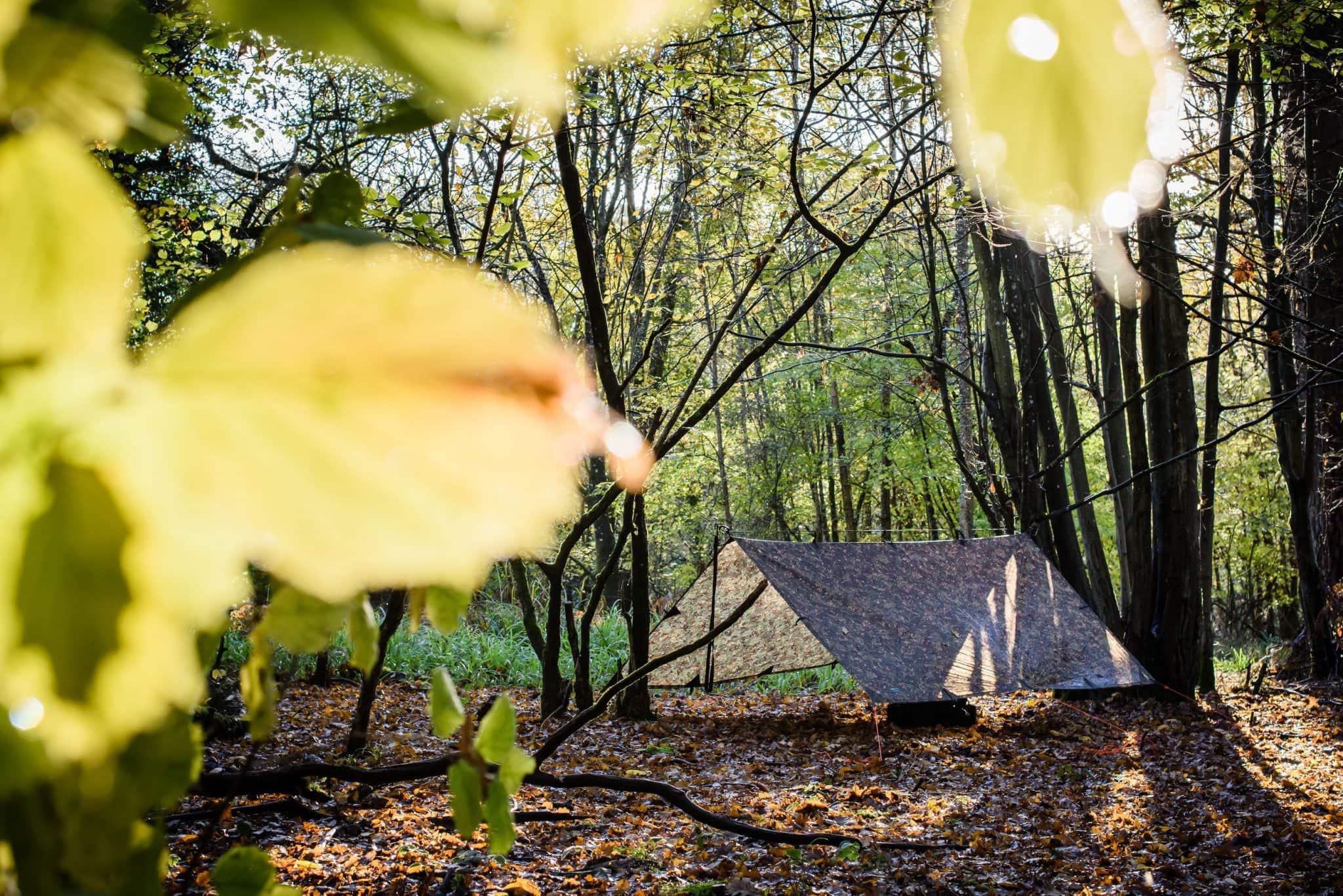 Tarp tent in the autumn