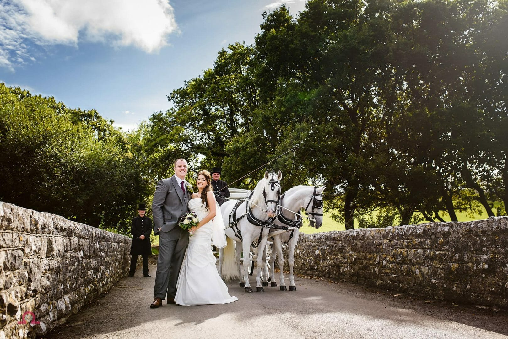 Horse And Carriage At A Dorset Wedding Libra Photographic